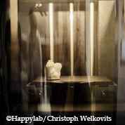 Happylab Christoph Welkovits