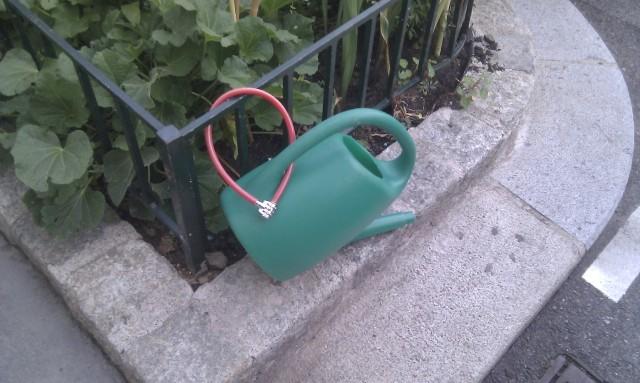 urban_gardening